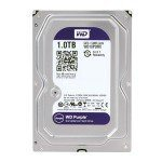 HD 1 TB PURPLE WESTERN DIGITAL